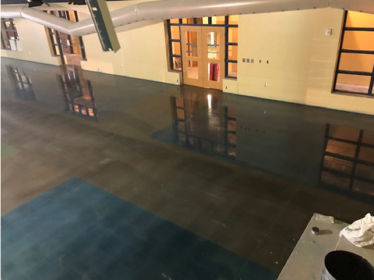 This polished concrete floor has a pattern containg blue and brown.
