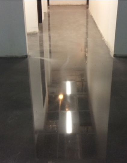 A polished cement floor runs through this hallway.